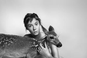 B_India_(Deer)_LORES