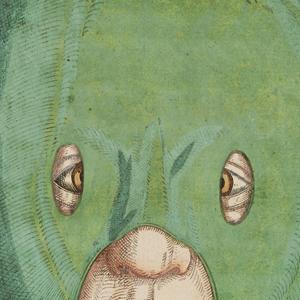 VIGNETTE3_illustration-medicale-biologie-02